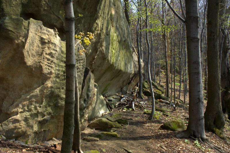 Skalnaté útvary na vrcholu Ondřejovska.