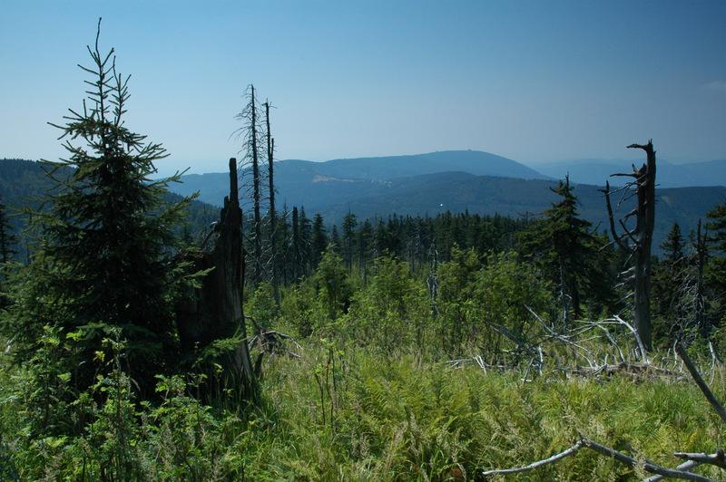 Národní přírodní rezervace Kněhyně - Čertův mlýn.