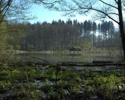 Zadní Opatovský rybník