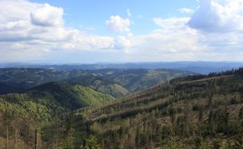 Pohled z úbočí Lysé hory (1324 m) směrem na Slovensko.
